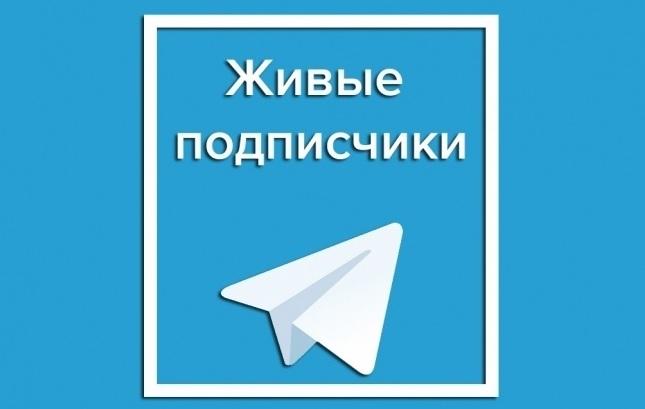 купить живых подписчиков Телеграм